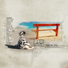 ValCDesigns and PinkReptile Designs - Life is Good- {Bundle}