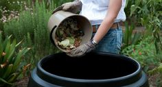 Tui Garden | A Beginner's Guide to Composting