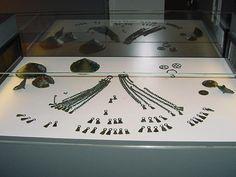 Le «trésor» de Moriez:  beauté éclatante, celle d'un important dépôt de bronze Oui il existe un «trésor» au musée de Quinson: celui de Moriez. Il s'agit d'une découverte archéologique exceptionnelle, celle d'un dépôt de bronze important. En effet, 140 bijoux et objets ont été retrouvés à Moriez, une commune des Alpes de Haute-Provence située dans le haut Verdon. Ce trésor remonte à l'extrême fin de l'Âge du Bronze, aux IXe et Xe siècles avant notre ère.