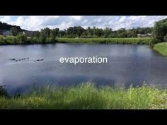Water Cycle Video Lesson - Almost a Second Grader - www.almostasecondgrader.com