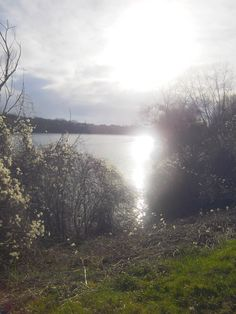 A beautiful lake in Essonne.