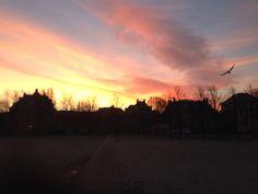 Morgen #museumplein Amsterdam