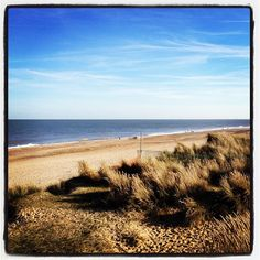 """See 15 photos and 6 tips from 131 visitors to Winterton On Sea Beach. """"If you come during December and January, there are masses of beautiful Atlantic. Great Places, Places Ive Been, Great Yarmouth, Seaside Village, Free Range, Kite, Norfolk, Wales, Beaches"""