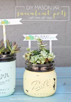 DIY mason jar succulent pots with free printable gift tags. Cute tags, nice technique to paint/age mason jars. But mason jars dont drain and would surely cause root rot. Mason Jar Succulents, Succulent Pots, Mason Jar Terrarium, Succulents Diy, Pot Mason Diy, Mason Jar Gifts, Teacher Appreciation Gifts, Teacher Gifts, Diy Hacks