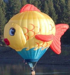 Balloon Fiesta Pilot] Welcome pilot Katie Griggs from Dayton,NV, who will fly this great Special Shape named Sushi. Balloon Glow, Flying Balloon, Love Balloon, Big Balloons, Balloon Rides, Hot Air Balloon, Expo 67 Montreal, Albuquerque Balloon Fiesta, Air Balloon Festival