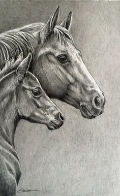 "An original equine graphite pencil drawing of a Quarter Horse mare and foal, entitled ""Spring Foal"""