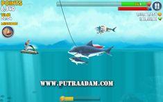 Hungry Shark Evolution Mod Apk Evolution, Shark, Entertainment, Money, Games, Movie Posters, Film Poster, Popcorn Posters, Sharks