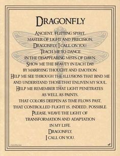 Not a believer in wiccan beliefs, but dragonflies represent my sister. This speaks to me. Dragonfly Poster Size Wicca Pagan Witch Totem Goth Punk Book of Shadows Dragonfly Quotes, Dragonfly Tattoo, Dragonfly Symbolism, Dragonfly Art, Hummingbird Symbolism, Dragonfly Drawing, Dragonfly Images, Bd Art, Animal Spirit Guides