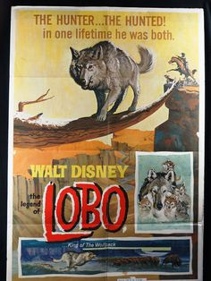 """Excited to share the latest addition to my #etsy shop:  """"The Legend of LOBO... King of the Wolfpack""""      DISNEY  Original 1962 Movie Poster           http://etsy.me/2F5ttls"""