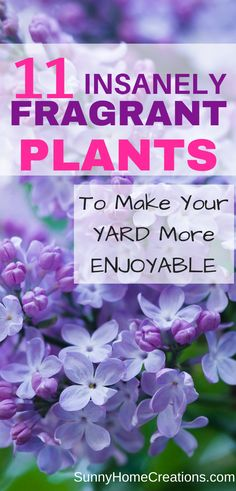 These 11 plants are all super fragrant to make your yard and garden smell wonderful. The flowers are all beautiful and are perfect for adding to your front, side, or back yard landscaping. Gardening Best Smelling Plants for you Yard Cottage Garden Design, Cottage Garden Plants, Diy Garden, Garden Landscape Design, Garden Art, Garden Ideas, Cottage Gardens, Dream Garden, Unique Gardens