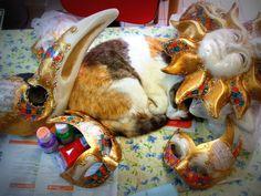 Cat ...and masks ...Maskerelle.it