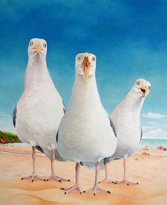 Beach Boys by Vicky Mount
