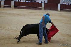 Mi pasion los toros