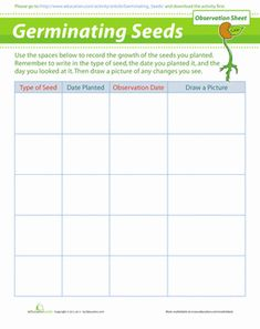 Plant & Seed Growth Chart   Art Projects for Kids   Plants ...   Science Project Plant Growth Charts