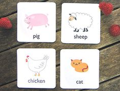 Great site for free educational printables.  All types of flash cards (animal, numbers, alphabet, etc).