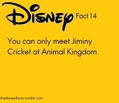 You can only meet Jiminy Cricket at Animal Kingdom and I DID!!!!!