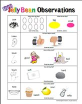 Candy Cane observations sheet to talk/teach about 5 senses Senses Activities, Science Activities, Science Experiments, Winter Activities, Science Week, Math Games, Kindergarten Science, Science Classroom, Teaching Science