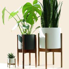 maceteros modernos para decorar en primavera White Ceramic Planter, Ceramic Plant Pots, White Planters, Modern Planters, Planter Pots, Tall Plant Stands, Modern Plant Stand, Fern Plant, Snake Plant