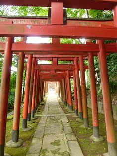 """""""Suwajinja"""" (Sacrario), Nagasaki Japan (Settembre)"""