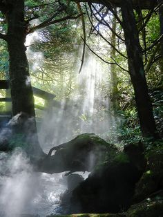 Canada Hot Springs near Tofino, (Vancouver Island) Vancouver Island, British Columbia, Rocky Mountains, The Places Youll Go, Places To See, Vancouver Photography, Western Canada, Canada Travel, Island Life