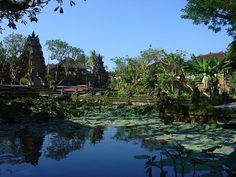 I would love to see Bali. What a beautiful place.