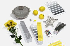 Pantone has chosen two colors for the Pantone Color of the Year 2021: PANTONE 17-5104 Ultimate Gray and PANTONE 13-0647 Illuminating. Studio Mcgee, Color Of The Year, All The Colors, Pantone Swatches, Pantone 2020, Apartment Therapy, Neutral, Latest Colour, Color Pairing