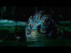 Luckily, after the movie's big Oscar win, I don't think that will be the lasting impression for The Shape of Water. Perhaps if Guillermo del Toro had . Monsters Den, Horror, Most Popular Movies, The Shape Of Water, Yennefer Of Vengerberg, Romantic Films, Best Love Stories, Mermaids And Mermen, Afraid Of The Dark