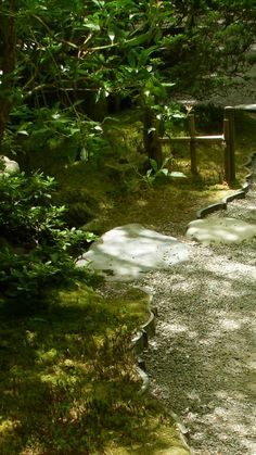 Portland Japanese Garden in Washington Park (Portland, Oregon).   The garden is made up of the five individual gardens this is the Natural Garden - a hillside garden leading to the Sand and Stone Garden. This garden features different styles of steps and stepping stones, tiny bridges, rivulets and shallow streams.