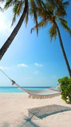 Hammock Palm Trees Beach iPhone 6 Plus HD Wallpaper