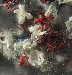 Ori Gersht, Blow Up - Untitled 18, 2007, Brand New Gallery
