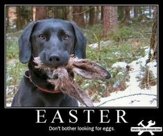 still my favourite Easter poster  lol