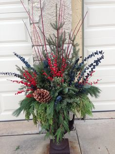 Winter Color - reds with greens for front yard