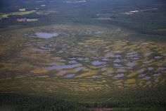 Swamp in Teuva, Finland. Finland, Parks, Map, Mountains, Nature, Travel, Naturaleza, Viajes, Location Map