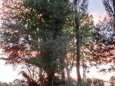 luci al tramonto