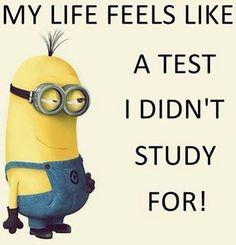 My life feels like