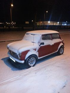 My mini in March snow