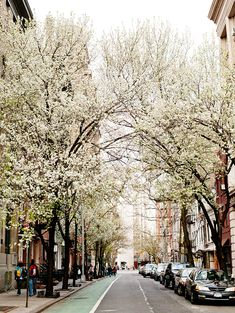 spring in the west village (nyc - it don't get any better than dat)