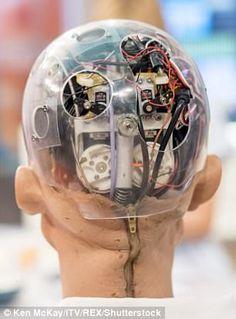 """Résultat de recherche d'images pour """"Sophia, a robot"""""""