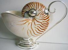 Nautilus shell and silver gravy boat Seashell Art, Seashell Crafts, Coastal Living, Coastal Decor, Nautilus Shell, Vases, Milky Way, Table Centerpieces, Sea Shells