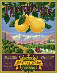***AN ORIGINAL FRUIT CRATE LABEL*** Brand Vintage California Persimmon OH YES