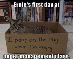 Anger management box