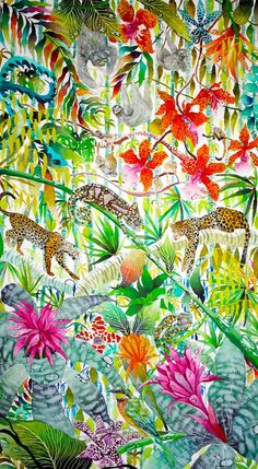 Jungle Imaginings - Kate Morgan - Artist