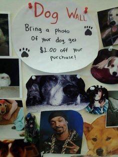 Snoop Dog XD