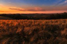 Tuscany sunset - null