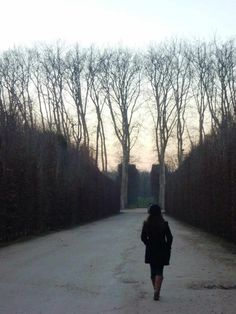 VERSAILLES #winter #europe