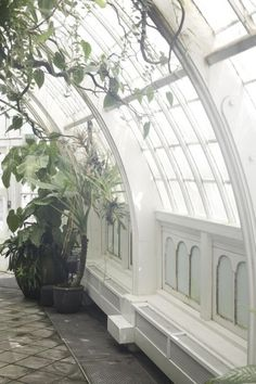 An arched ceiling full of windows turns a rooftop into a dreamy greenhouse.