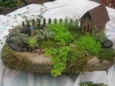 30 Miniature Garden Ideas