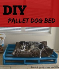 DIY Pallet Dog Bed #