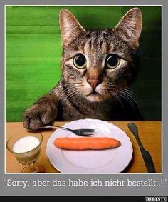 Sorry, aber das habe ich nicht bestellt..!