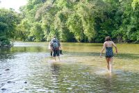 Hiking on rio claro toward its rivermouth Corcovado National Park Corcovado National Park, National Park Tours, Costa Rica Travel, Know Who You Are, Rio, Golf Courses, Wildlife, Hiking, Nature